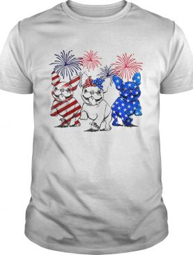 Independence day 4th of July French bulldog beauty America flag