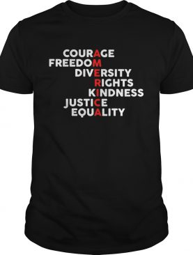 America courage freedom diversity rights kindness justice equality