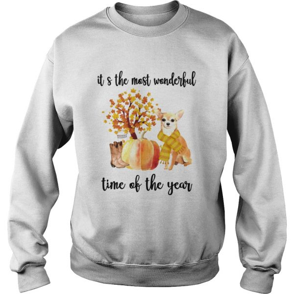 Halloween Chihuahua Its The Most Wonderful Time Of The Year Shirt Sweatshirt