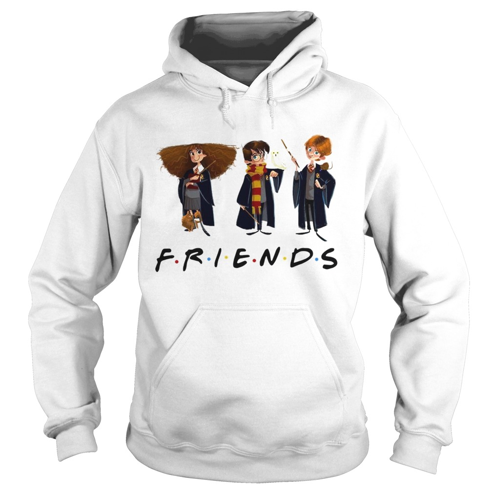 Hermione Granger Harry Potter and Ron Weasley friends tv show  Hoodie