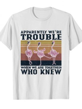 Flamingo apparently we're trouble when we are together who knew vintage shirt