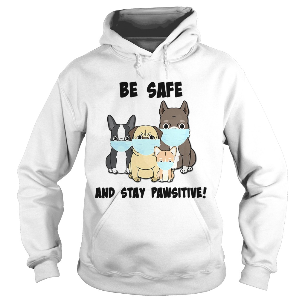 Dog Mask Be Safe And Stay Pawsitive  Hoodie