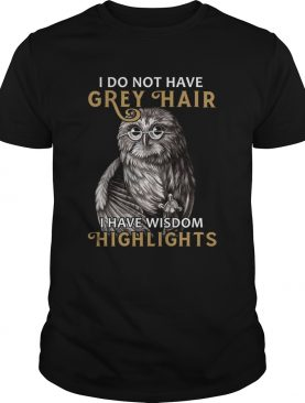 I do not have grey hair I have wisdom highlights shirt
