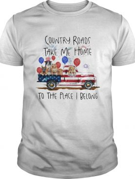 Country roads take me home to the place I belong dogs truck american flag independence day shirt