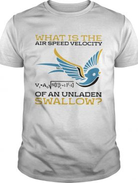 What Is The Air Speed Velocity Of An Unladen Swallow Math shirt