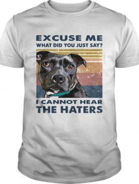 Pitbull Excuse Me What Did You Just Say I Cannot Hear The Haters Vintage shirt