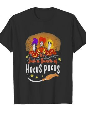 Halloween it's just a bunch of hocus pocus shirt